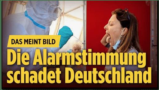 Screenshot Bild.de - Das meint Bild - Die Alarmstimmung schadet Deutschland