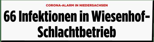 Screenshot Bild.de - Corona-Alarm in Niedersachsen - 66 Infektionen in Wiesenhof-Schlachtbetrieb