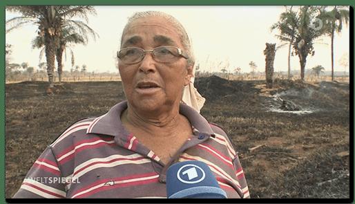 Screenshot vom ARD-Weltspiegel: Eine Frau wird interviewt, um sie herum abgebrannter Regenwald