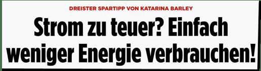 Screenshot Bild.de - Dreister Spartipp von Katarina Barley - Strom zu teuer? Einfach weniger Energie verbrauchen