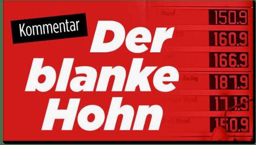 Screenshot Bild.de - Der blanke Hohn