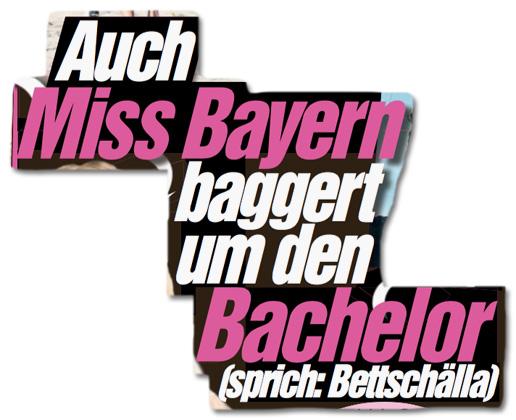 Ausriss Bild-Zeitung - Auch Miss-Bayern baggert um den Bachelor sprich: Bettschälla
