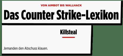 Screenshot Bild.de - Von Aimbot bis Wallhack - Das Counter Strike-Lexikon - Killsteal - Jemanden den Abschuss klauen