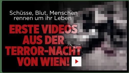Screenshot Bild.de - Schüsse, Blut, Menschen rennen um ihr Leben - Erste Videos aus der Terror-Nacht von Wien!