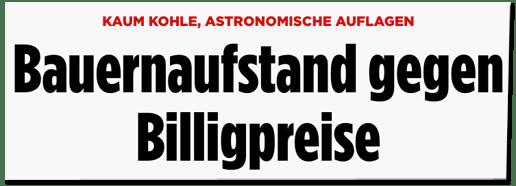 Screenshot Bild.de - Kaum Kohle, astronomische Auflagen - Bauernaufstand gegen Billigpreise