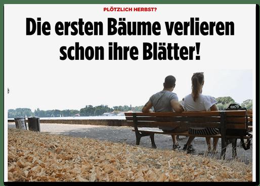 Screenshot BILD.de: Plötzlich Herbst? - Die ersten Bäume verlieren schon ihre Blätter!