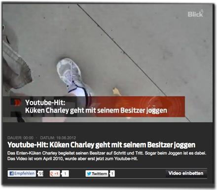 Youtube-Hit: Küken Charley geht mit seinem Besitzer joggen. Das Enten-Küken Charley begleitet seinen Besitzer auf Schritt und Tritt. Sogar beim Joggen ist es dabei. Das Video ist vom April 2010, wurde aber erst jetzt zum Youtube-Hit.