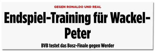 Screenshot Bild.de - Gegen Ronaldo und Real - Endspiel-Training für Wackel-Peter BVB testet das Bosz-Finale gegen Werder