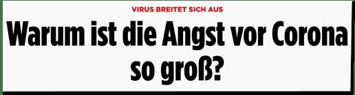 Screenshot Bild.de - Virus breitet sich aus - Warum ist die Angst vor Corona so groß?