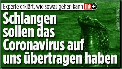 Screenshot Bild.de - Experte erklärt, wie sowas gehen kann - Schlangen sollen das Coronavirus auf uns übertragen haben