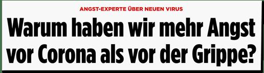 Screenshot Bild.de - Angst-Experte über neuen Virus - Warum haben wir mehr Angst vor Corona als vor der Grippe?