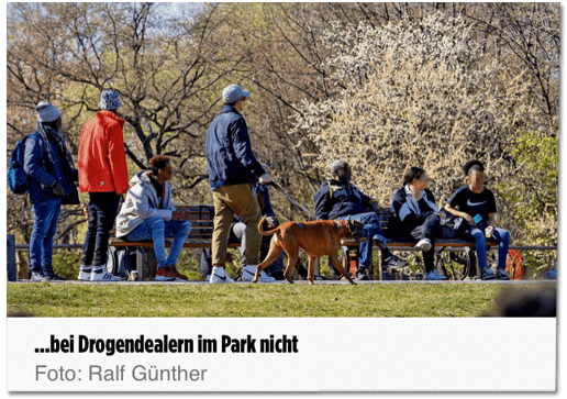 Screenshot Bild.de - Bei Drogendealern im Park nicht