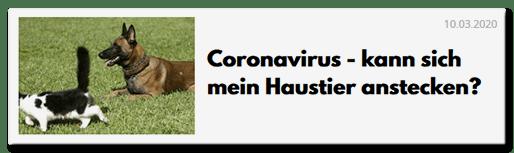 Coronavirus - kann sich mein Haustier anstecken?