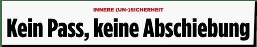 Screenshot Bild.de - Innere Unsicherheit - Kein Pass, keine Abschiebung
