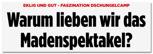 Schlagzeile BILD.de: Eklig und gut - Faszination Dschungelcamp - Warum lieben wir das Madenspektakel?