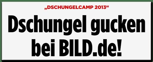 Schlagzeile BILD.de: Dschungelcamp 2013 - Dschungel gucken bei BILD.de!