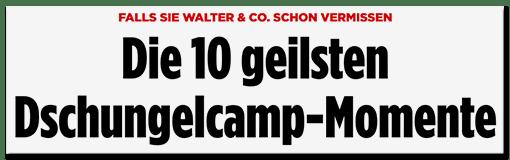 Schlagzeile BILD.de: Die 10 geilsten Dschungelcamp-Momente