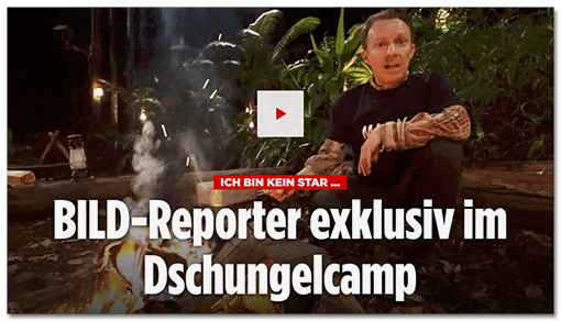 Schlagzeile BILD.de: BILD-Reporter exklusiv im Dschungelcamp