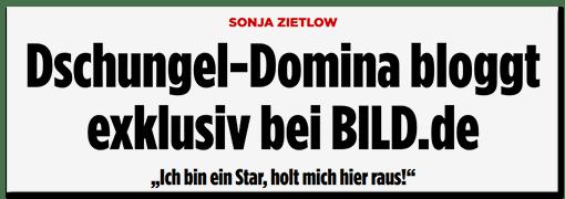 Schlagzeile BILD.de: Sonja Zietlow - Dschungel-Domina bloggt exklusiv bei Bild.de