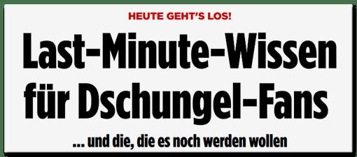 Schlagzeile BILD.de: Heute geht's los! - Last-Minute-Wissen für Dschungel-Fans ... und die, die es noch werden wollen