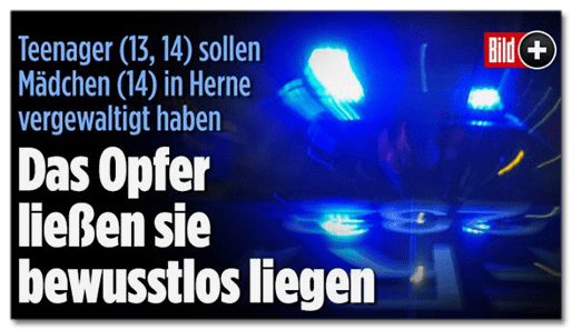 Screenshot BILD.de:  Teenager (13, 14) sollen Mädchen (14) vergewaltigt haben - Das Opfer ließen sie bewusstlos in den Büschen liegen