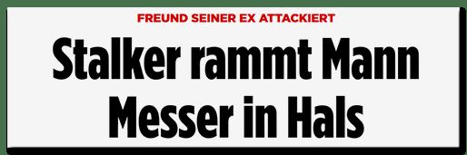 Screenshot BILD.de: Freund seiner Ex attackiert - Stalker rammt Mann Meser in Hals