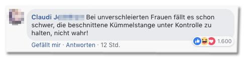 Screenshot eines Kommentars auf der Bild-Facebookseite - Bei unverschleierten Frauen fällt es schon schwer, die beschnittene Kümmelstange unter Kontrolle zu halten, nicht wahr