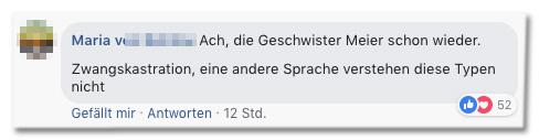 Screenshot eines Kommentars auf der Bild-Facebookseite - Ach, die Geschwister Meier schon wieder. Zwangskastration, eine andere Sprache verstehen diese Typen nicht