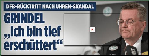Screenshot Bild.de - DFB-Rücktritt nach Uhren-Skandal - Grindel: Ich bin tief erschüttert