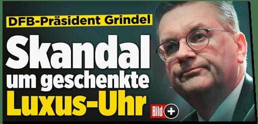 Screenshot Bild.de - DFB-Präsident Grindel - Skandal um geschenkte Luxus-Uhr