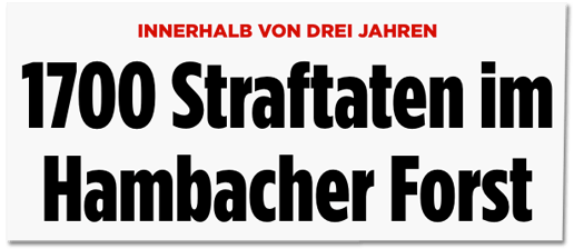 Screenshot Bild.de - Innerhalb von drei Jahren - 1700 Straftaten im Hambacher Forst