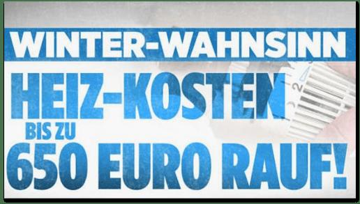 Screenshot Bild.de - Winter-Wahnsinn - Heiz-Kosten bis zu 650 Euro rauf