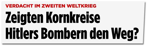 Screenshot Bild.de - Zeigten Kornkreise Hitlers Bombern den Weg?