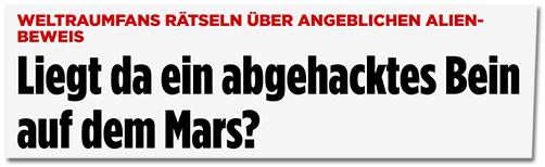 Screenshot Bild.de - Liegt da ein abgehacktes Bein auf dem Mars?