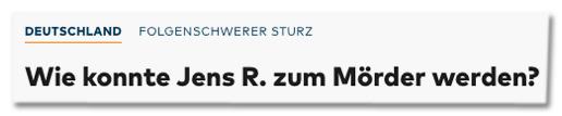 Screenshot Welt.de - Folgenschwerer Sturz - Wie konnte Jens R. zum Mörder werden?