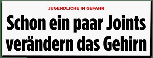 Screenshot Bild.de - Jugendliche in Gefahr - Schon ein paar Joints verändern das Gehirn