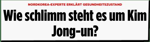 Screenshot Bild.de - Nordkorea-Experte erklärt Gesundheitszustand - Wie schlimm steht es um Kim Jong-un?