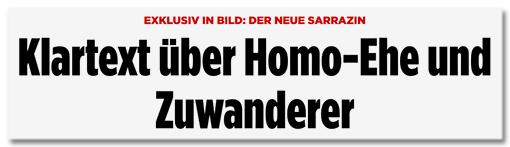 Screenshot Bild.de - Klartext-Politiker Thilo Sarrazin über Hartz IV - Es wächst eine weitgehend funktions- und arbeitslose Unterklasse heran
