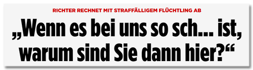 Screenshot Bild.de - Richter rechnet mit straffälligem Flüchtling ab - Wenn es bei uns so sch... ist, warum sind Sie dann hier?