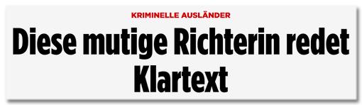 Screenshot Bild.de - Kriminelle Ausländer - Diese mutige Richterin redet Klartext