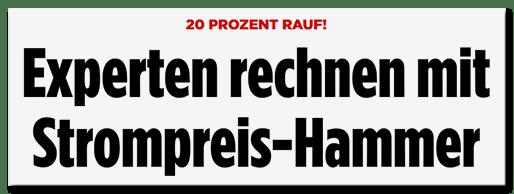 Schlagzeile Bild.de: Experten rechnen mit Strompreis-Hammer