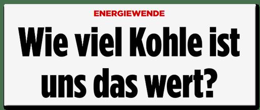 Schlagzeile Bild.de: Energiewende - Wie viel Kohle ist uns das wert?