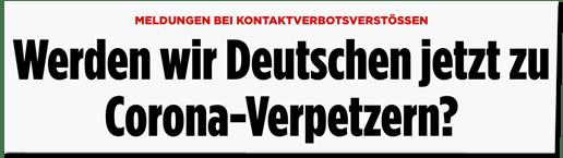Screenshot Bild.de - Meldungen bei Kontaktverbotsverstößen - Werden wir Deutschen jetzt zu Corona-Verpetzern?