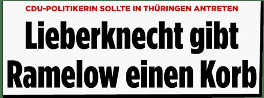 Screenshot Bild.de - CDU-Politikerin sollte in Thüringen antreten - Lieberknecht gibt Ramelow einen Korb