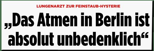 Screenshot Bild.de - Lungenarzt zur Feinstaub-Hysterie - Das Atmen in Berlin ist absolut unbedenklich