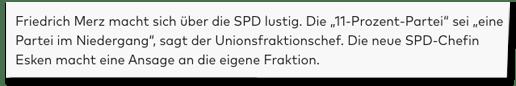Screenshot Welt.de - Friedrich Merz macht sich über die SPD lustig. Die 11-Prozent-Partei sei eine Partei im Niedergang, sagt der Unionsfraktionschef. Die neue SPD-Chefin Esken macht eine Ansage an die eigene Fraktion.