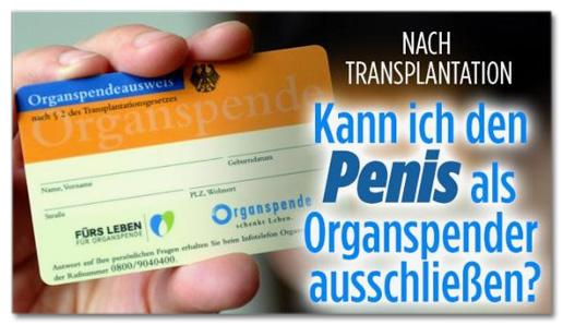 Nach Transplantation - Kann ich den Penis als Organspender ausschließen?