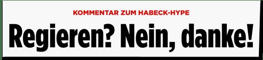 Screenshot Bild.de - Kommentar zum Habeck-Hype - Regieren? Nein, danke! - Warum sich die Grünen jetzt nicht wegducken dürfen