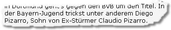 In der Bayern-Jugend trickst unter anderem Diego Pizarro, Sohn von Ex-Stürmer Claudio Pizarro.