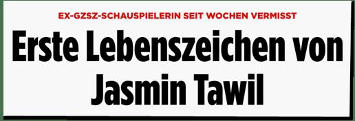 Screenshot Bild.de - Ex-GZSZ-Schauspielerin seit Wochen vermisst - Erste Lebenszeichen von Jasmin Tawil